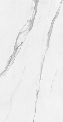 Picture of CR.CELLINI BLANCO PULIDO 60x120cm